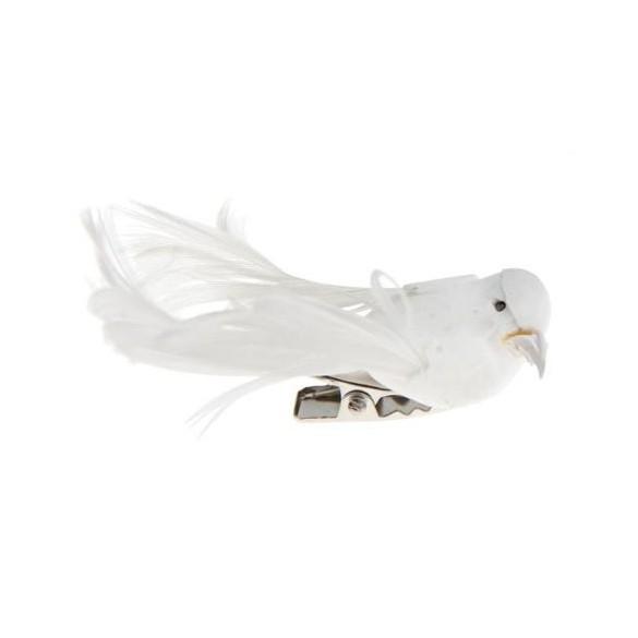 4 petits oiseaux blanc