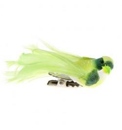 4 petits oiseaux vert