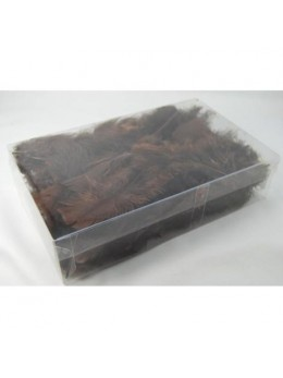 Boite plumes plates deluxe chocolat