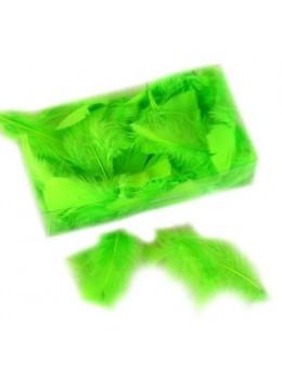 Boite plumes plates deluxe vert anis
