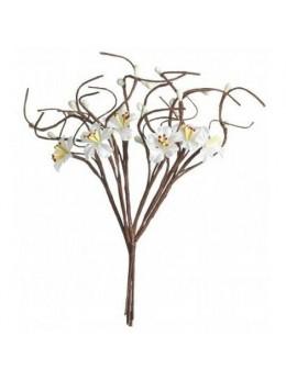 Bouquet fleurs de pommier blanc
