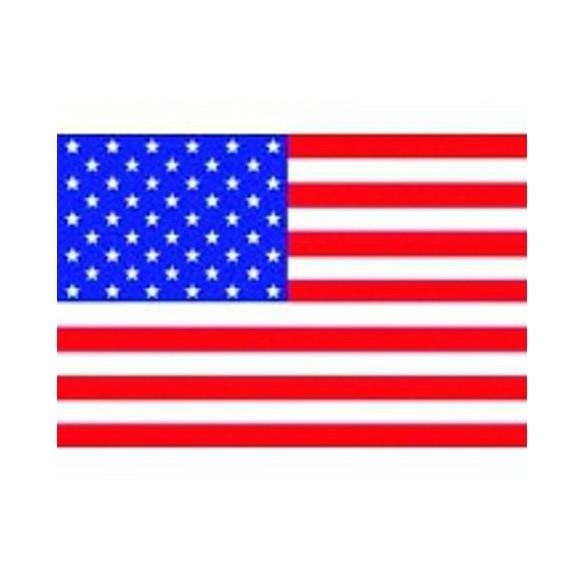 Drapeau plastique USA 9.5cm par 16cm