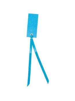 12 Marque place rectangle ruban turquoise