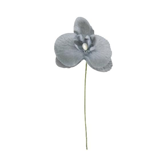 6 Orchidées grise
