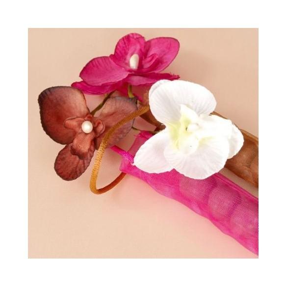 6 Orchidées ivoire