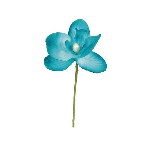 6 Orchidées turquoise