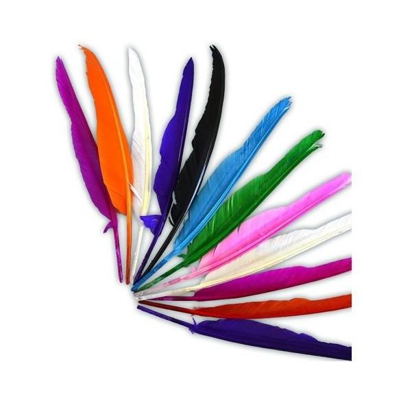 Sachet 12 plumes indiens