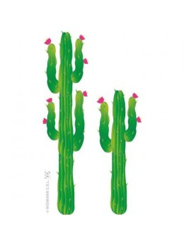 Set 2 cactus