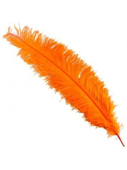 Plume d'autruche deluxe orange 65cm