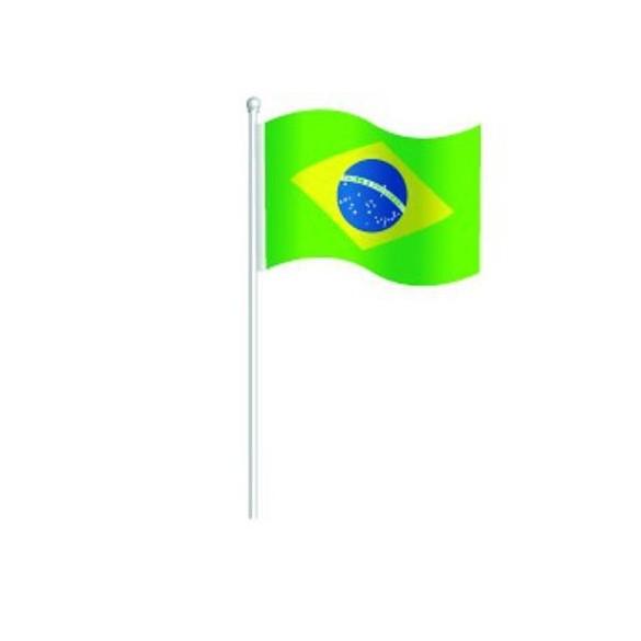 6 Marque Place Drapeau Brésil