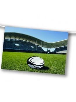 Guirlande terrain de rugby 4m