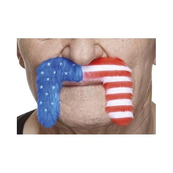 Moustache motard USA