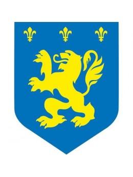 Déco médiévale lion bleu