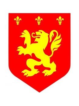 Déco médiévale lion rouge