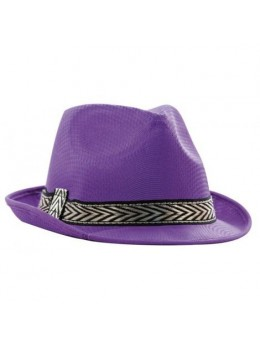 Chapeau Tony polyester violet