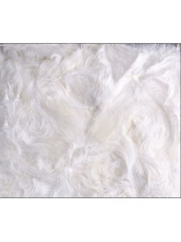 Boîte de plumes blanc 100 grammes