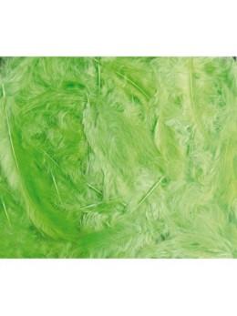 Boîte de plumes vert lime 100 grammes