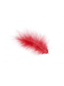 Lot de 5 plumes rouge