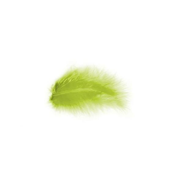 Pochette de plumes vert kiwi 10 grammes