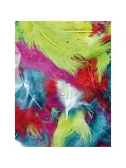 Pochette de plumes multicolore 10 grammes