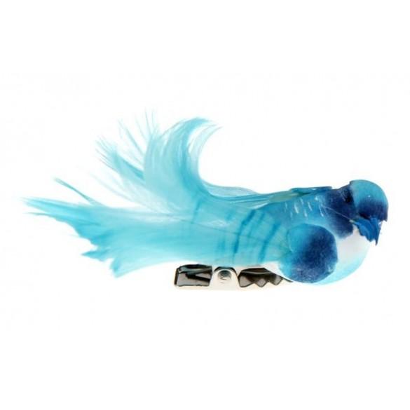 4 petits oiseaux turquoise