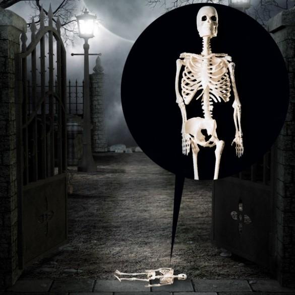 Figurine squelette 30cm