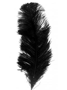 plume d'autruche 30cm