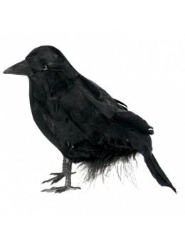 déco corbeau