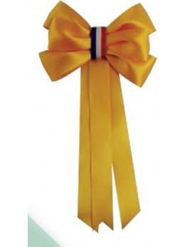 Cocarde conscrits classe jaune