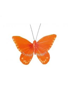2 Papillons orange