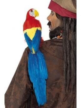 perroquet plumes