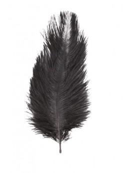 5 Plumes autruche noir 20-25cm