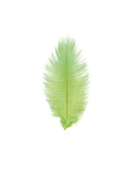 5 Plumes autruche vert anis 20-25cm