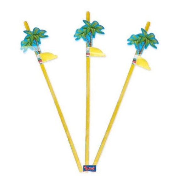 8 Pailles palmier 24cm
