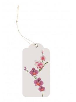12 étiquettes orchidées