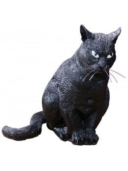 Déco chat noir effrayant