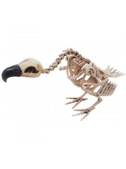 Déco squelette de vautour