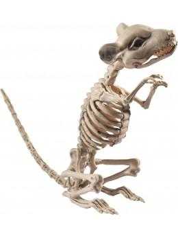 Déco squelette de rat