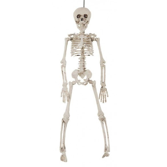 Déco mini squelette 40cm