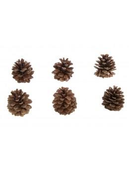 6 pommes de pin naturelles 6cm