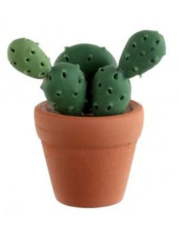 Marque place cactus vert