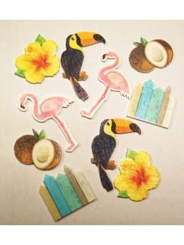 10 confetti bois tropique