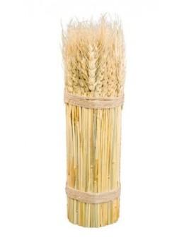Déco botte épi de blé