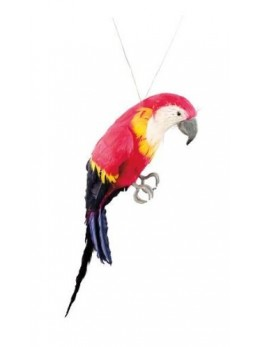 Déco perroquet multicolore 37cm