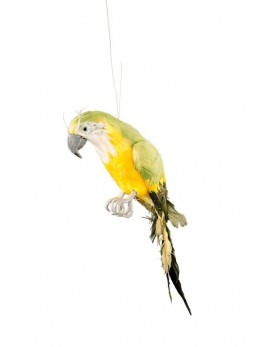 Déco perroquet vert et jaune 37cm