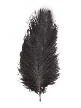 2 Plumes autruche noir deluxe 35cm