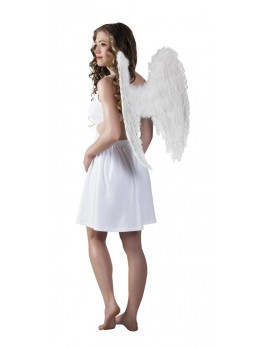 Ailes ange blanches en plumes