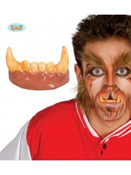 Dentier loup garou