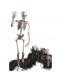 Déco squelette articulable
