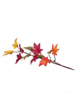 Branche d'automne rouge, orange et jaune